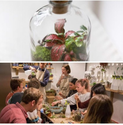 London Terrariums are Putting on a Workshop here at WIRED