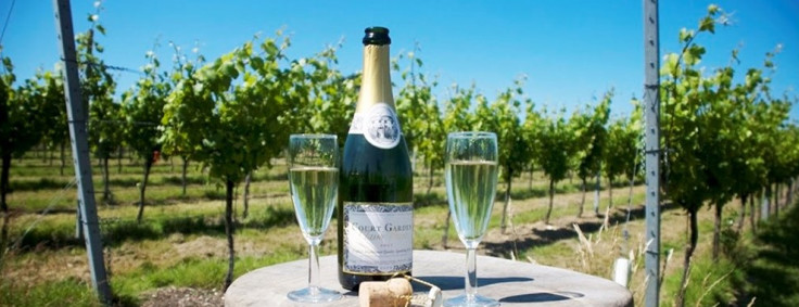 East Sussex: Winery Tour inc Tastings for 2 just £23!