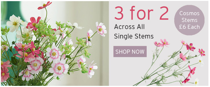 3 for 2 on Single stems until 30th June 2017