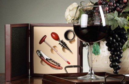 Become a Promoter and the Win this lovely Sommelier Set (most post views weekly)